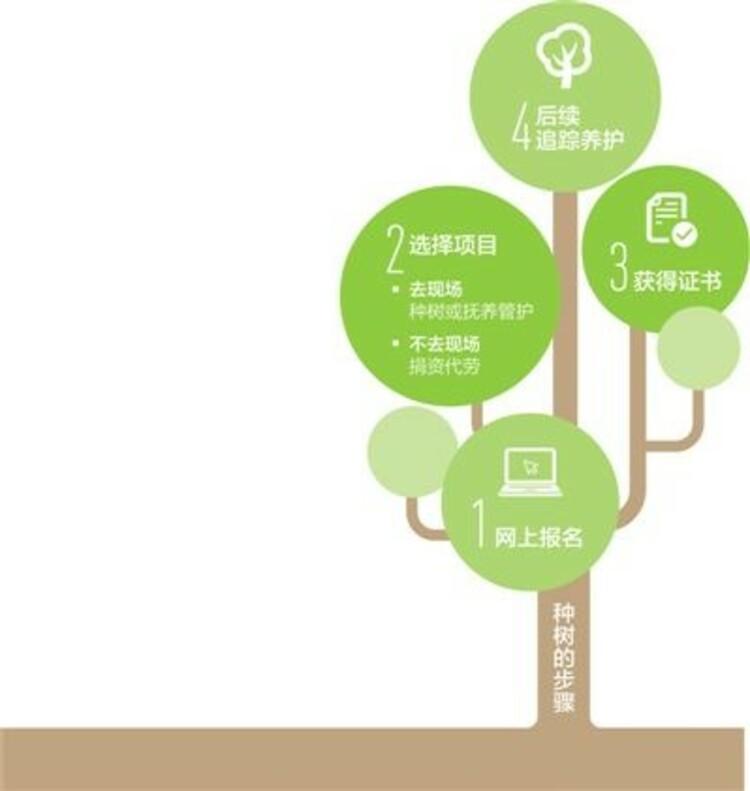 陝西等10地域で植樹ボランティアのオンラインプラットフォーム開設 インターネット植樹が流行に