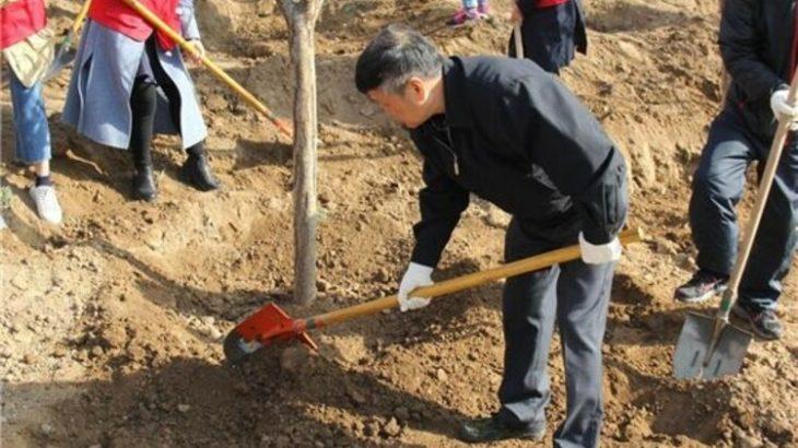 約600人で1600本以上を植樹 西安雁塔が幸福な緑の街作り