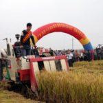 ASEANが陝西省の果物輸出の主戦場に