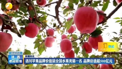 洛川リンゴがブランド価値ランキングの果物類で一位 ブランド価値は500億元以上