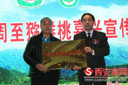 周至県の副県長がネット生出演へ 地元産のキウイを販促