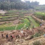 陝西省の大・中型灌漑区 様々な対策で防疫と春灌を両立
