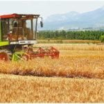 陝西省の乾燥地小麦、潼関から収穫が始まる渭南市の農業機械6000台が各地に遠征