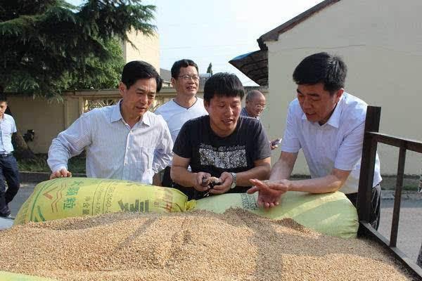 梁桂氏が咸陽で治水と夏穀物の買付について調査