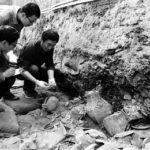 陝西省、昨年発掘した古代墳墓は3956基 考古学的探査は約1180万m2実施